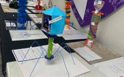 7th Grade Bacteriophages